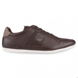K31g7497 - Lacoste CHAYMON PREMIUM Dark Brown/Light Brown - Unisex - Shoes